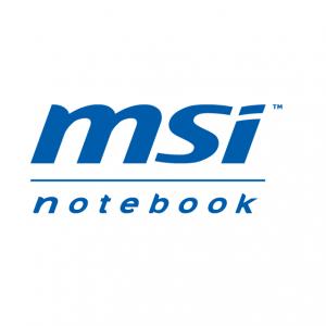 Аккумуляторы MSI