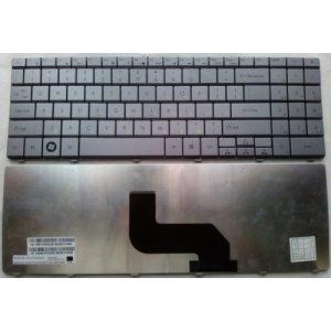 Клавиатура для ноутбука GATEWAY NV52 NV53 NV54 NV78 NV79 EC54 серебристая РУССКАЯ РАСКЛАДКА